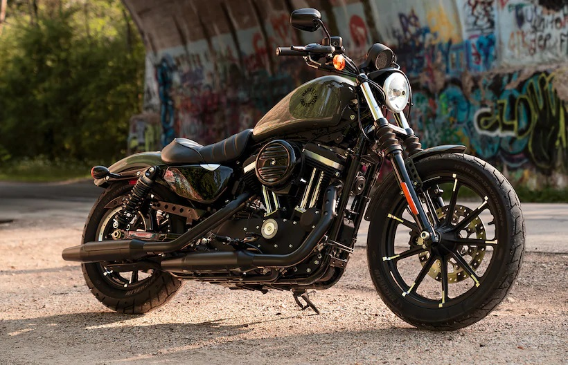 2021 Harley Davidson Iron 883 Side View Outdoors