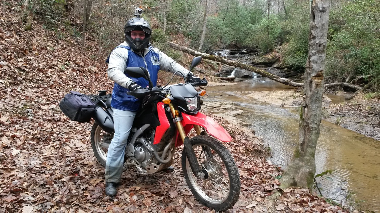 CRF250L in the woods